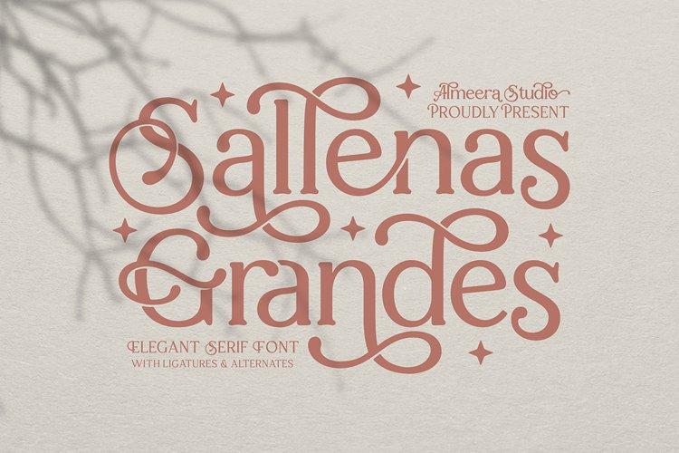 Sallenas Grandes|Elegant Serif Font example image 1