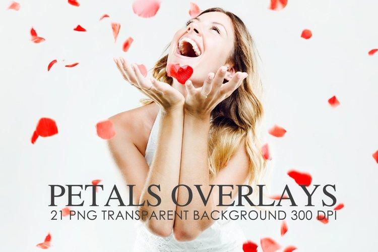 Overlays Petal, Petal background, png example image 1