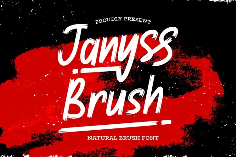 Janyss Brush - Natural Brush Font example image 1