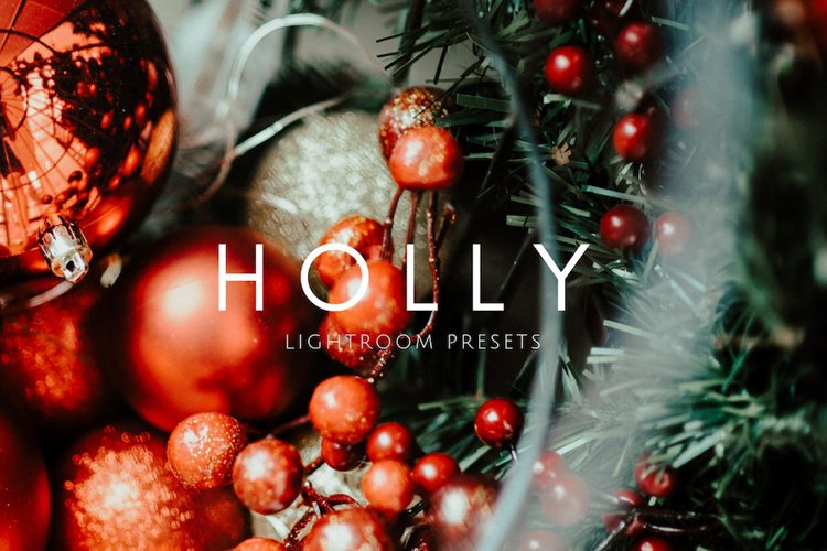 Rich Vibrant HOLLY Holiday Moody Tones Lightroom Presets example image 1