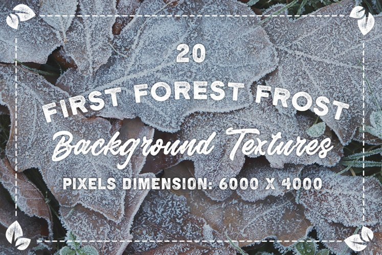 20 First Forest Frost Backgrounds example image 1