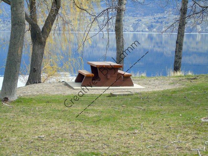 Picnic Table Trees Lake Photograph example image 1