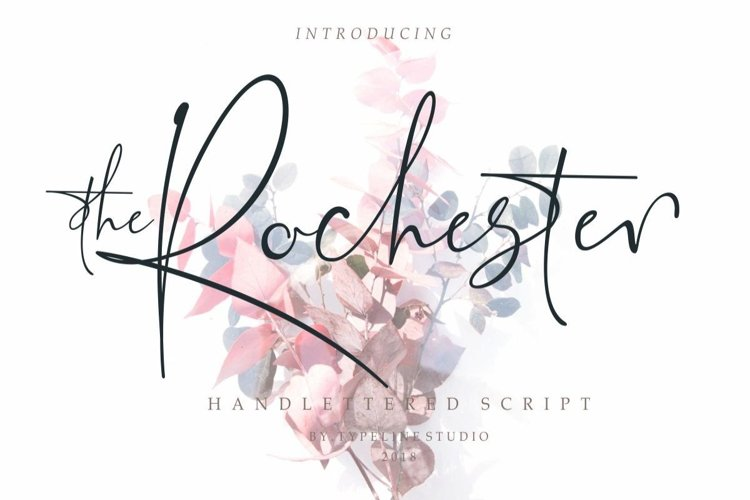 the Rochester // Beautiful Signature example image 1