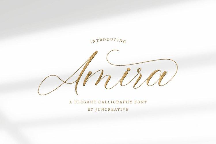 Amira example 1