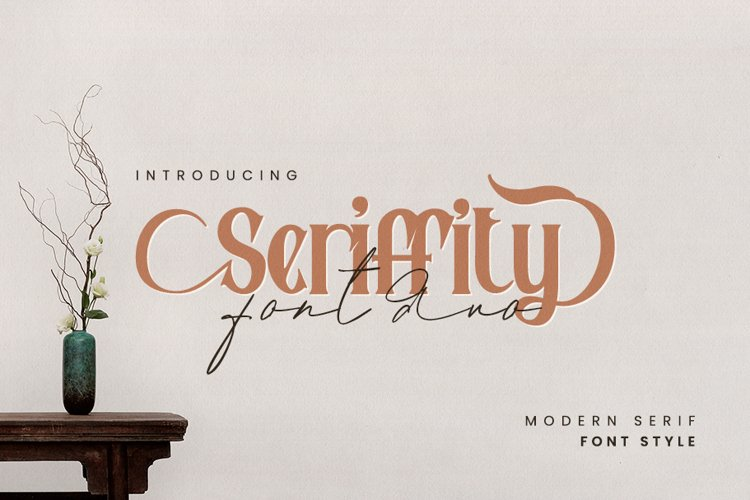 Seriffity font duo example image 1