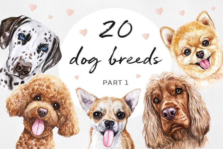 PART 1. Watercolor illustration set DOG breeds. Cute 20 dogs
