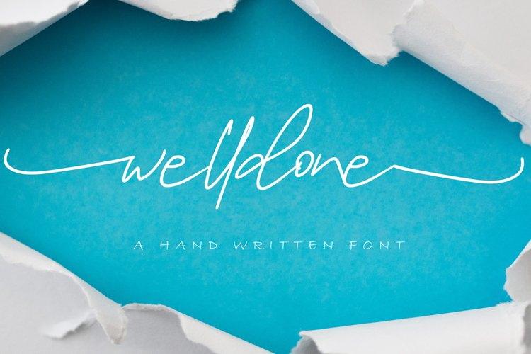Welldone // Signature Font example image 1
