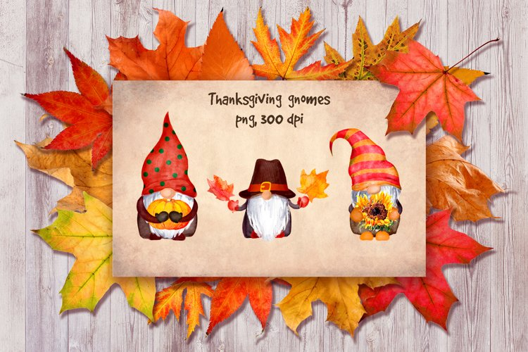 Thanksgiving gnomes bundle PNG. Watercolor gnome clipart