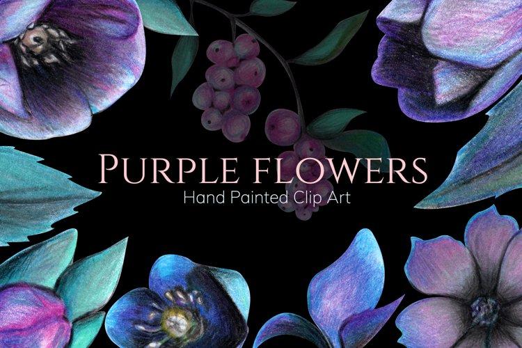 Purple flowers clip-art Seamless pattern Hand-painted