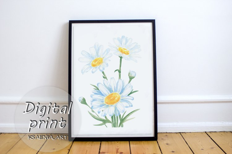 Abstract bouquet watercolor Chamomiles. Hand painted