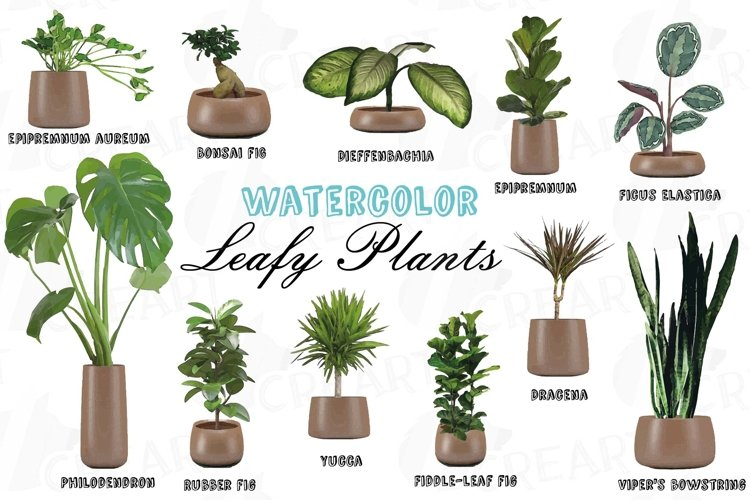 Leafy plants clip art collection, Watercolor plants in pot example image 1