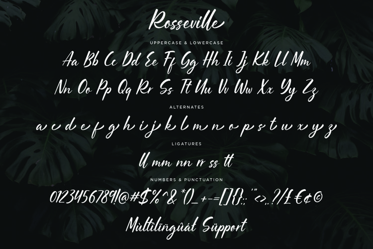 Rosseville example 1