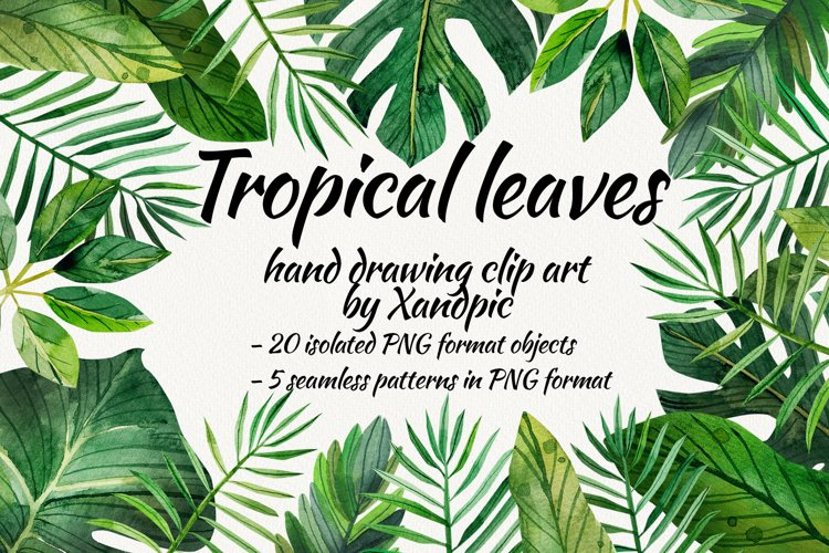 Watercolor tropical leaves ,clip art. Drawing Tropical example image 1