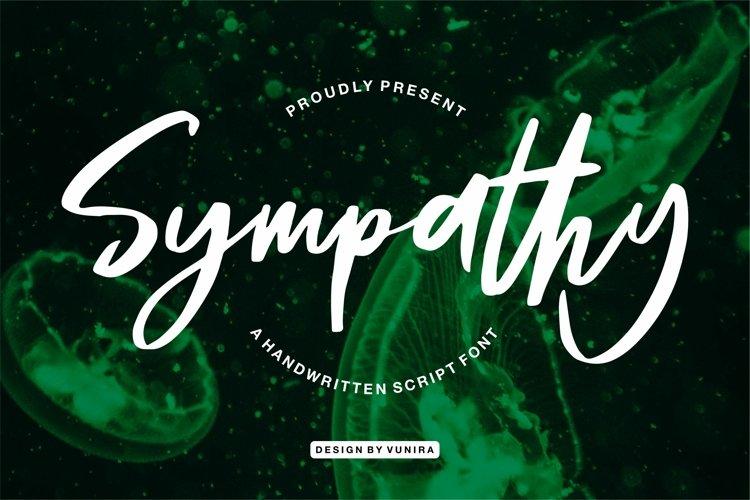 Sympathy - A Handwritten Script Font example image 1