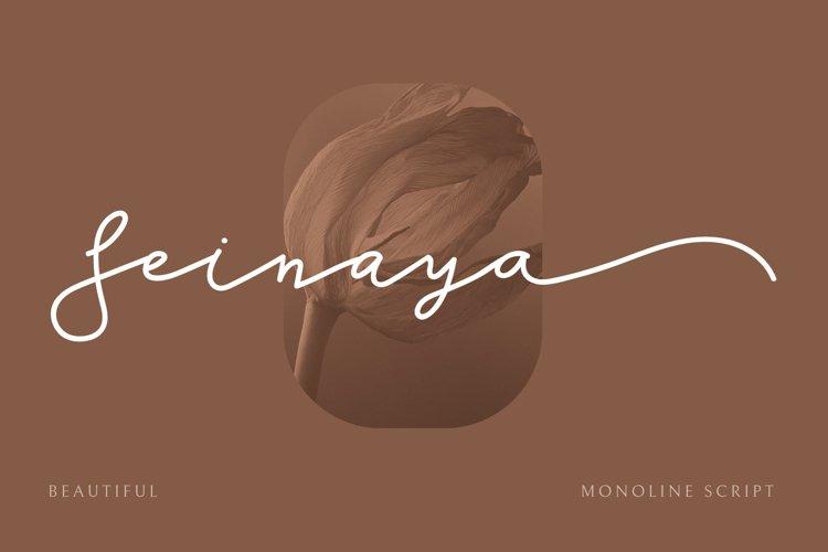 SEINAYA - Signature Font