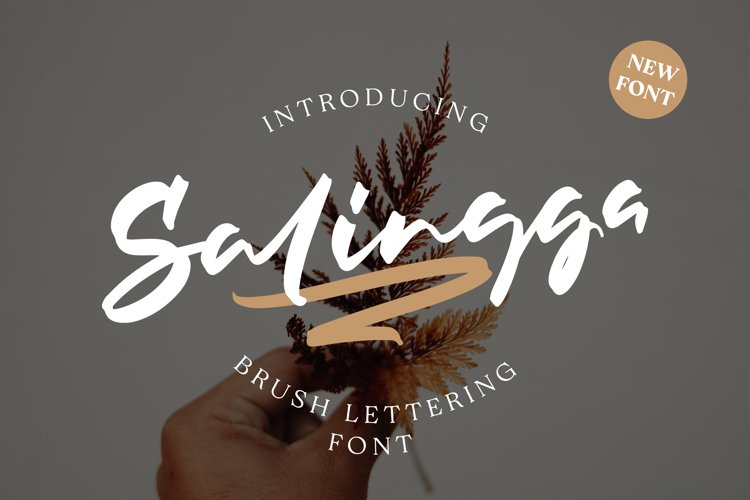 Salingga - A Brush Lettering Script example image 1