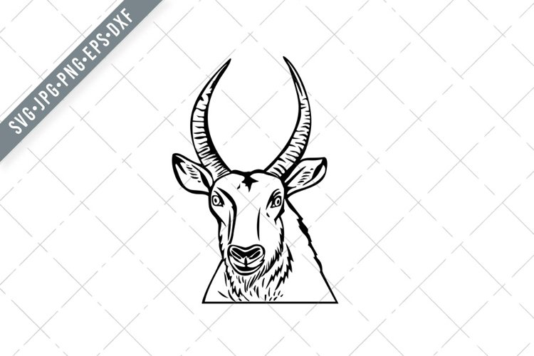 Head of a Defassa Waterbuck Front View Stencil Black SVG example image 1
