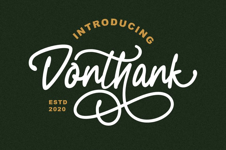 Donthank - Script Typeface example image 1