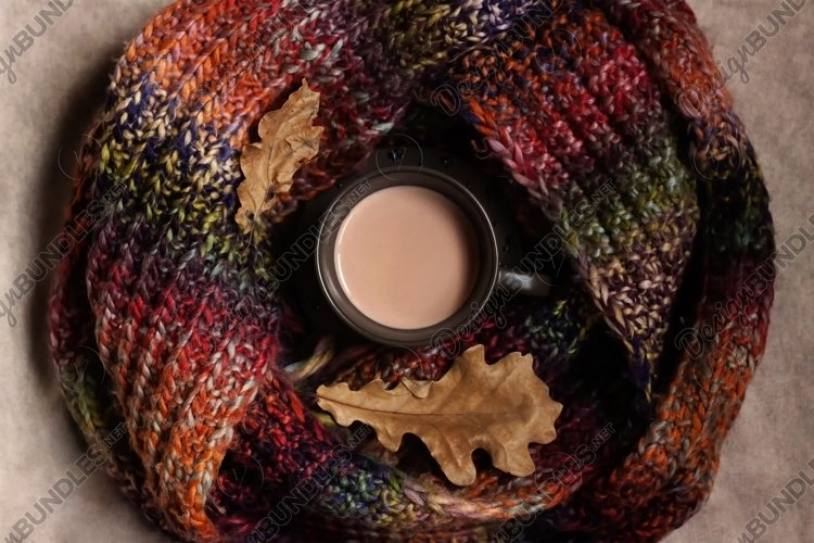 A cup of cocoa with a multicolor knitted scarf and leaves