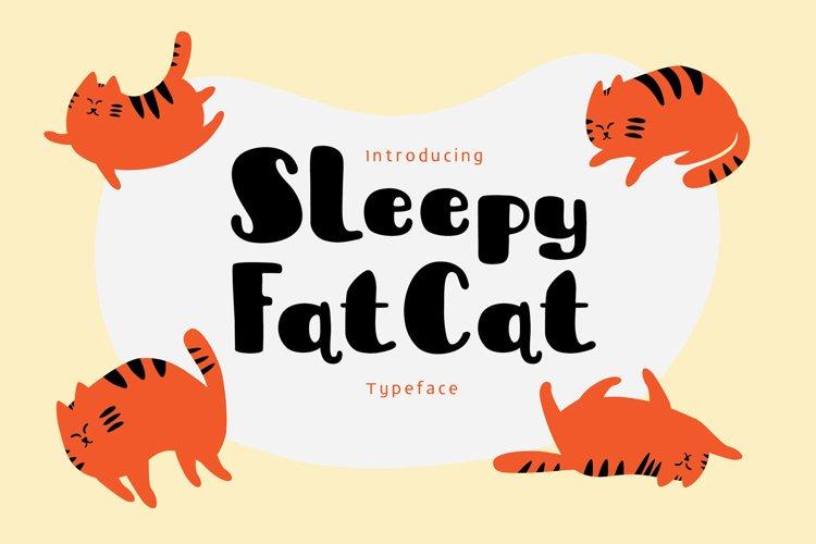 Sleepy Fat Cat example image 1
