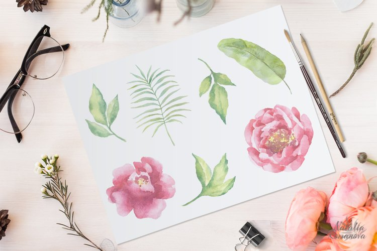 Watercolor Peonies set - Free Design of The Week Design0