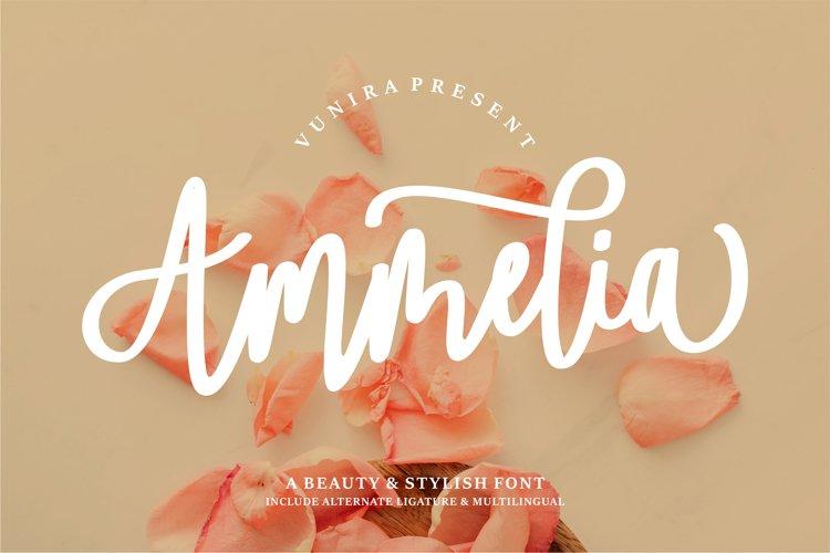 Ammelia   A Beauty & Stylish Font example image 1