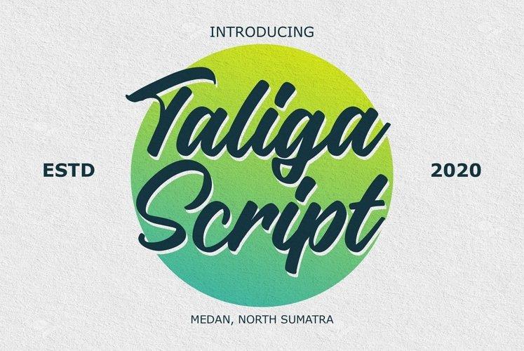 Taliga - Script Font example image 1