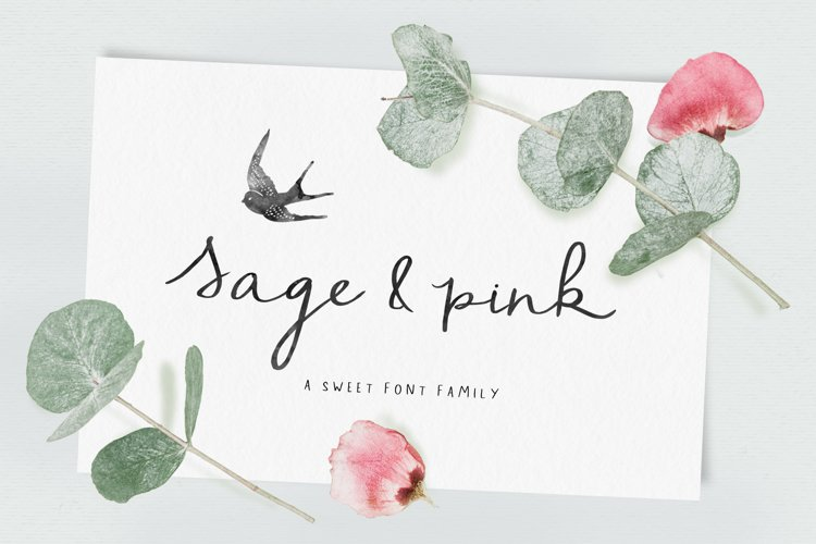 Sage and Pink Font Family