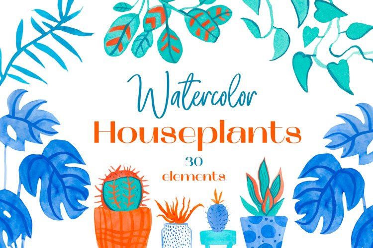 Watercolor House Plants.Indoor Leaves illustrations PNG.