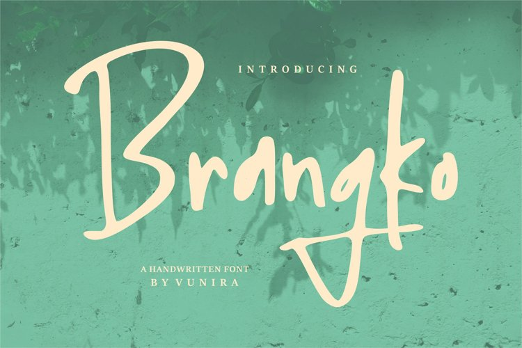 Brangko | A Handwritten Font example image 1
