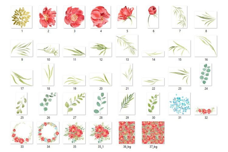 Red peonies clipart, red flowers watercolor clipart. example 2