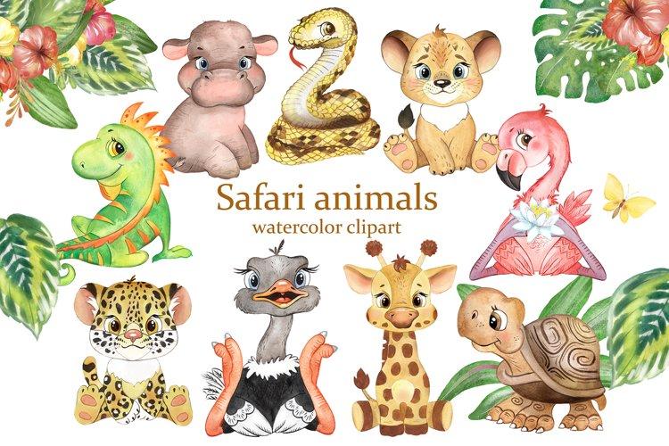 Safari animals clipart. Jungle animal. African animals.