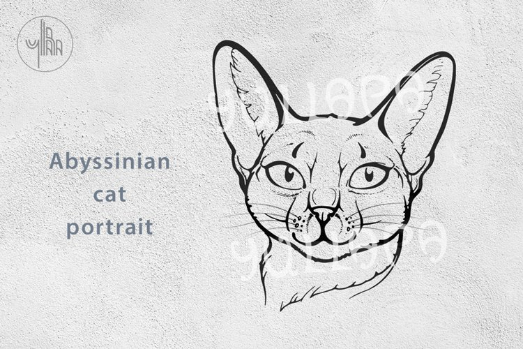 Abyssinian Cat Portrait, vector lineart, EPS, PDF, PNG, JPEG example image 1