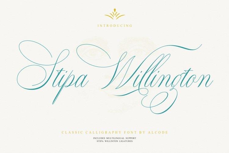 Stipa Willington example image 1