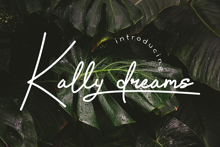 Kally dreams - monoline font example image 1