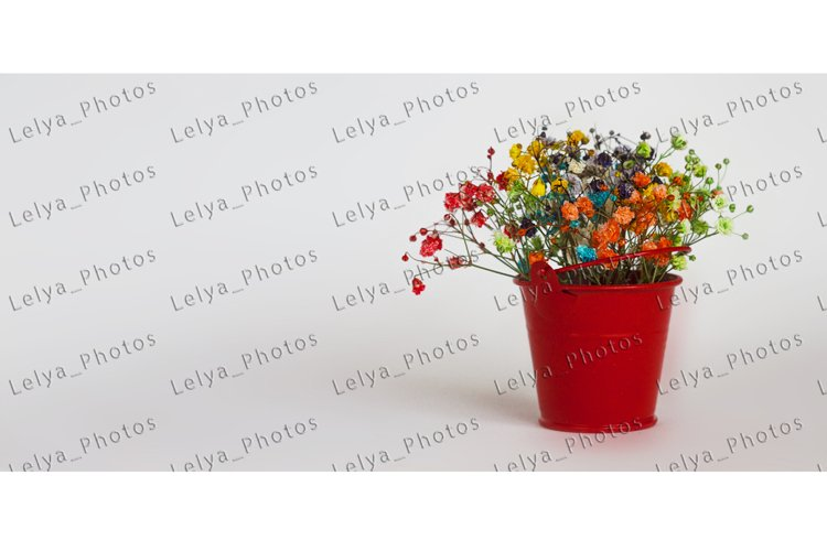 Bouquet of colorful flowers gypsophila in a red bucket