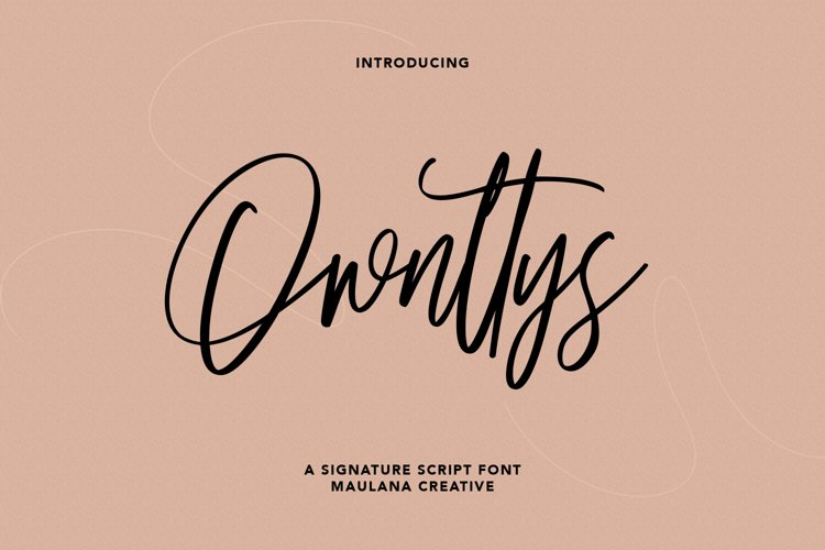 Ownttys Signature Script Font example image 1
