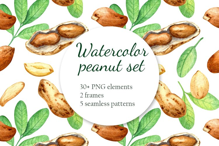 """Peanut"" Watercolor set example image 1"