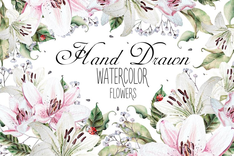 Hand Drawn watercolor flowers lily example image 1