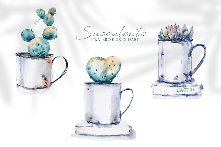 Watercolor potted cactus clipart. House potted plants