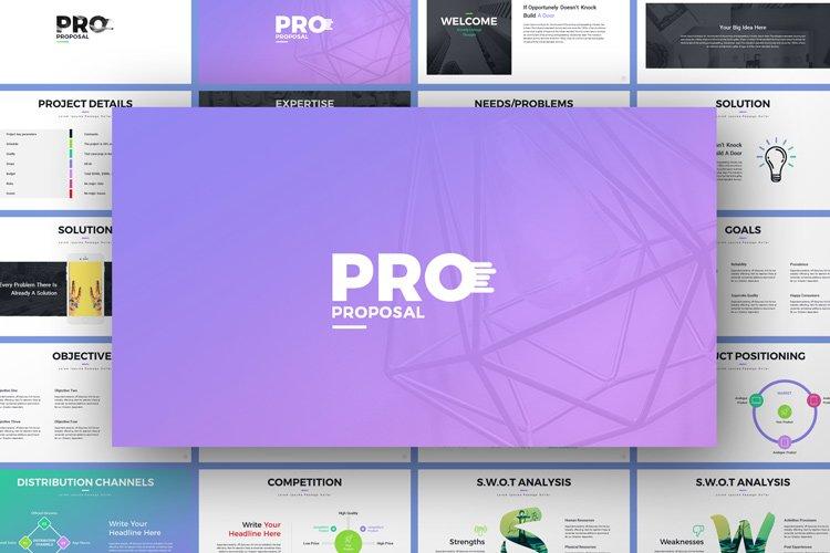 Pro Proposal PowerPoint Presentation Template
