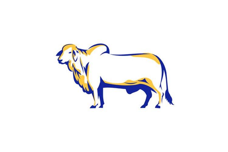 Brahman Bull Side View Retro example image 1