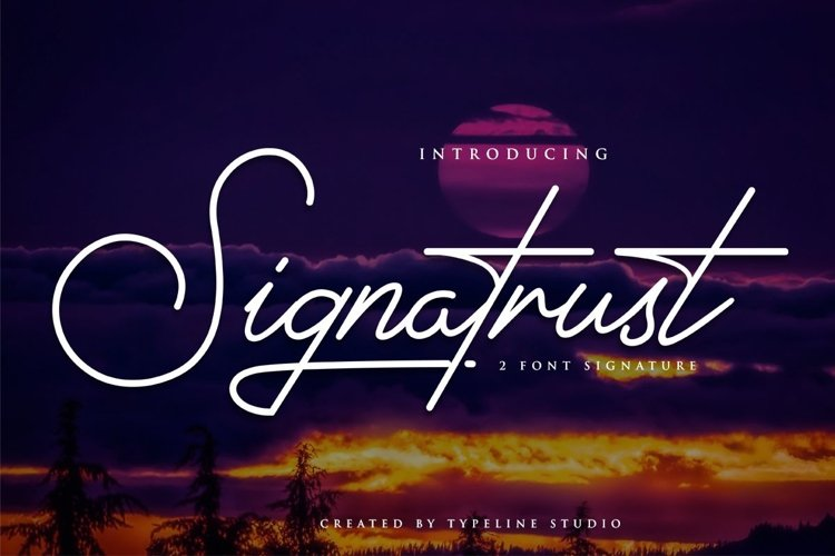 Signatrust / 2 font signature example image 1