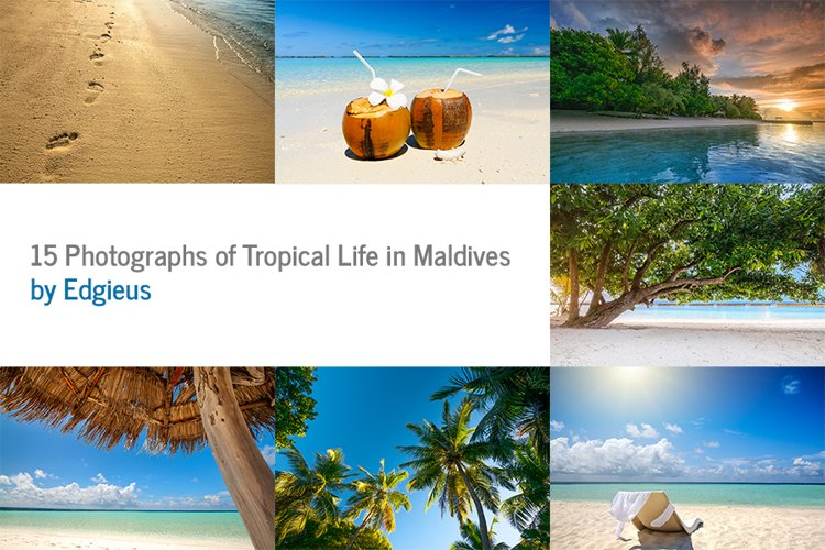 15 Photographs of Tropical Life in Maldives