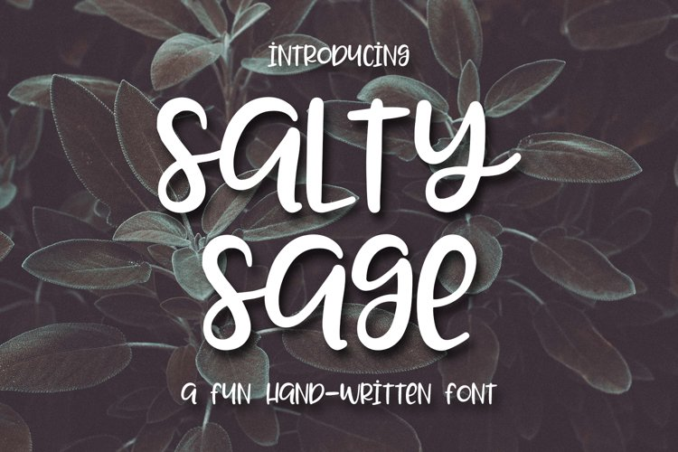Web Font Salty Sage- A Fun Hand-Written Font example image 1