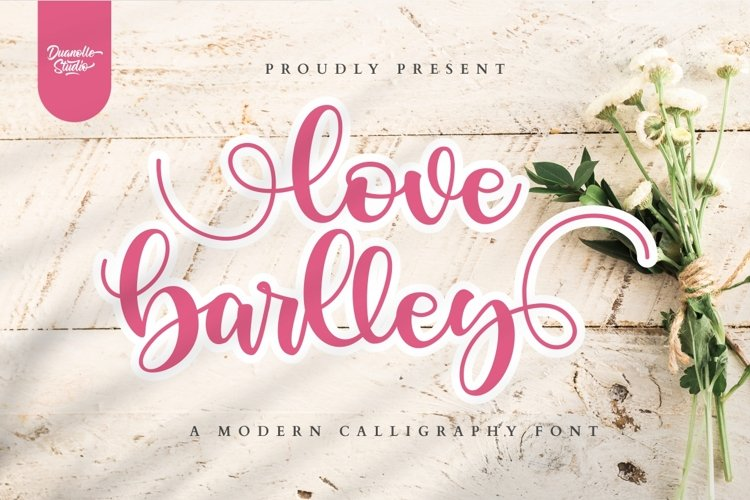 love barlley // lovely font example image 1
