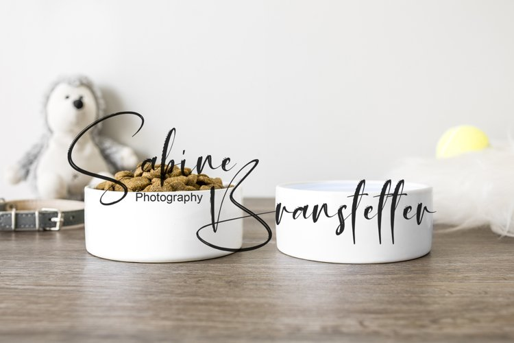 Mockup Two White Pet Water And Food Bowls Photography example image 1