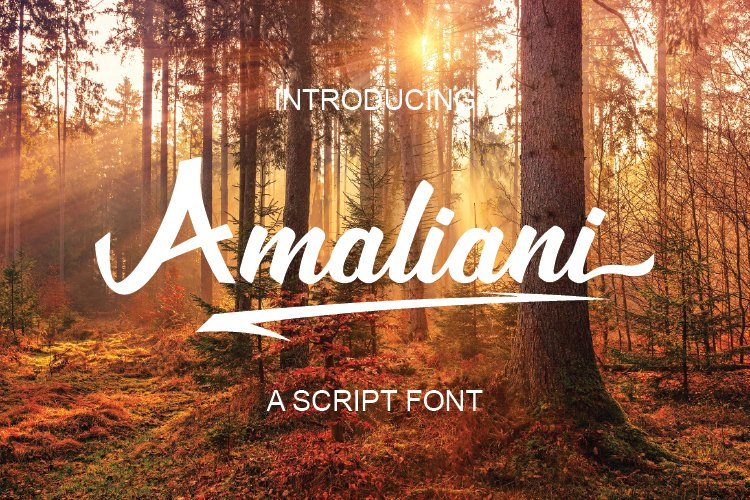 Amaliani Font example image 1