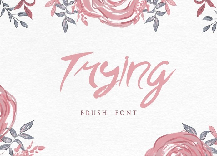 Trying Brush Font example image 1