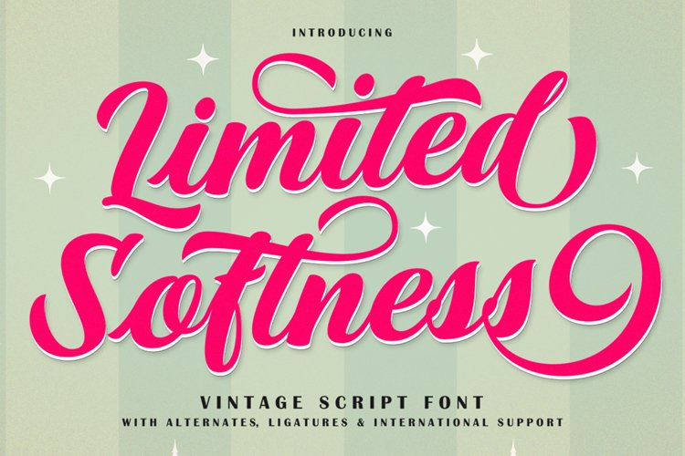 Limited Softness Script Font example image 1